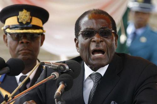 日本谋求进军非洲安倍拟邀津巴布韦总统访日(图)