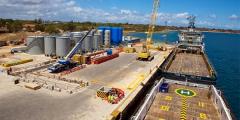 <strong>坦姆特瓦拉港2019年将服务巴拿马型船</strong>