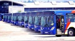 <strong>南非公交司机大罢工,公共交通面临瘫痪</strong>