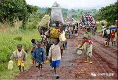 <strong>赞比亚难民危机一触即发,刚果(金)总统大选或促更多</strong>