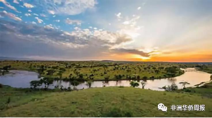 坦各方应重视保护马拉河流域生态环境,否则坦旅游业,农业等重要行业的