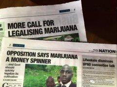 <strong>赞比亚经济需要大麻合法化来拯救?</strong>